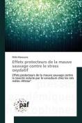 Effets Protecteurs de La Mauve Sauvage Contre Le Stress Oxydatif [FRE]