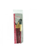 Vega Hand-crafted Set Of 5 Make-Up Brushes RV-05