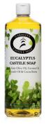 Eucalyptus Castile Soap