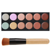 FiveBull 12 Professional Warm Colour Foundation Contour Concealer Camouflage Makeup Palette Face Contouring Kit with Cosmetic Brush