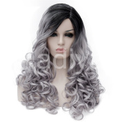 Kadiya American European Lady Hair Two Tone Silver Grey Black Water Wave Curls Fashion Wig 60cm