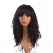 Namecute Ombre Brown Black Wig Kanekalon Synthetic Long Curly Kinky Wigs for Women + Free Wig Cap