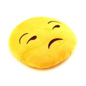 FW-211(US Seller) Plush Warm Soft Lovely Pillow Home Décor
