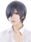 Aicos®Black Butler Mix Grey and Dark Blue Short Straight Wigs Ciel Phantomhive Anime Cosplay Wig