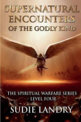 Supernatural Encounters of the Godly Kind - The Spiritual Warfare Series - Level Four