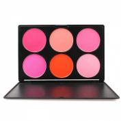 FantasyDay® Professional 6 Colours Large Powder Blush / Blusher Makeup Palette Contouring Kit - Ideal for Professional and Daily Use