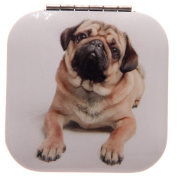 Blonde Pug On Belly Square Compact Mirror