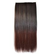 Abwin Ombre Two-tone Clip in Hair Straight