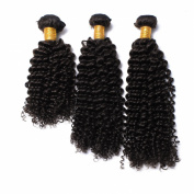 Meishanlian Kinky Curly Virgin Hair Brazilian Virgin Hair Weave Bundles 100% Human Hair Weave 300 Grammes Total