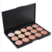 Professional Concealer Palette 15 Colour Concealer Facial Face Cream Care Camouflage Makeup Base Palettes Cosmetic