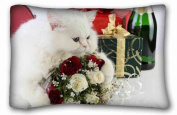 Custom ( Cats Animal Cat ) DIY Pillow Cover Size 50cm x 80cm suitable for Twin-bed PC-Bluish-34534