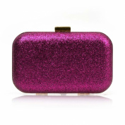 Snowskite Glitter Covered Fabric Hard Case Alloy Chain Strap Fashion Handbag Clutch