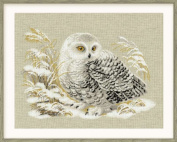 Riolis R1241 Counted Cross Stitch Kit, 45cm by 35cm , White Owl