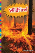 Wildfire! (Natural Disasters)