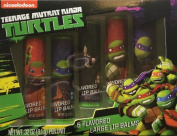 Nickelodeon Teenage Mutant Ninja Turtles Flavoured Lip Balms, 5 pc