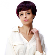I's® 3 Tone Colour Fashion Short Synthetic Hair Wigs 23cm 120g High Temperature