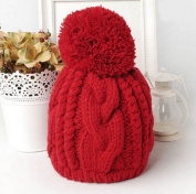 Big Pompom Hats Solid Colour Women's Caps Winter Knitted Skulies & Beanies Free Shipping Acrylic Cable Thick Hats for Women
