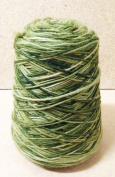 Brown Sheep Knitting Crochet Yarn Lanaloft Worsted Wool Cone Chameleon Green 0.5kg - 1st Quality -