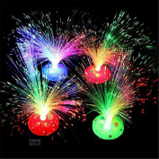 LED Colour Changing Fibre Optic Night Light Lamp Colourful Home Party Decor L