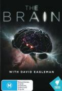 The Brain with David Eagleman [Region 4]