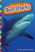 Bull Sharks (Sharks)