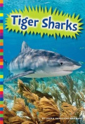 Tiger Sharks (Sharks)