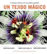 Un Tejido Magico [Spanish]