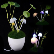 Firefly LED Light Sensor Mushroom Lamp/ MINI potted/bonsai/ Green Plants on the wall/night light,Automatic change colour, Romantic LED lighting,Perfect Gift