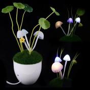 Firefly LED Light Sensor Mushroom Lamp/ MINI potted/bonsai/ Green Plants on the wall/night light,Automatic change colour, Romantic LED lighting,Perfect Gift