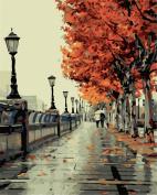 KINGSO DIY Oil Painting Paint By Numbers Kit Art Craft Walkway 40*50cm