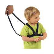 Bruin Navy Baby Safety Harness