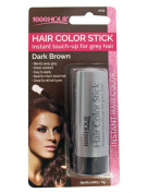 1000HR Touch Up Hail Colour Stick - Dark/Brown