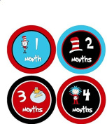 Seussical Inspired Monthly Baby Boy Stickers Seuss Baby Girl Stickers