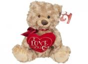 25cm Soft Plush Teddy Bear Holding I Love You Heart Valentines Gift