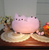 Pusheen Kawaii Soft Toy Plush Cat Cushion.*Pink COLOUR* 40cm by 30cm