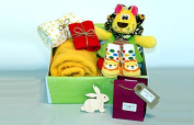 'Wild at Heart' - New baby gift hamper- Gift Box - Soft blanket - Lion Comfort Blanket - Character Socks - 100% cotton muslin - 100% cotton bright red bib - Essential oil gift for mum.