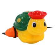 Redbox Amphibian Animal Turtle