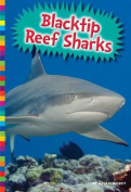 Blacktip Reef Sharks (Sharks)