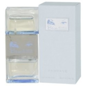 RAMPAGE BLUE EYES by Rampage EDT SPRAY 50ml for WOMEN ---