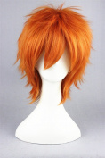 Short Anime Wigs High Quality Universal Anime Cosplay Wigs