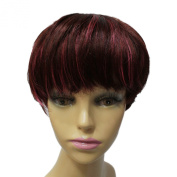 Capless Short Layered Straight Side Bangs Synthetic Hair Wig 20cm