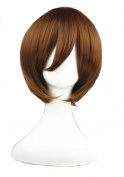 High Quality Anime Cosplay Wigs Short Wigs