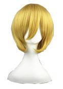 High Quality Anime Cosplay Wigs Short Wigs Halloween Hair Wigs