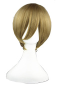 High Quality Costume Wigs Synthetic Cosplay Wig