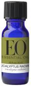 Everyone Essential Oil, Eucalyptus, 15ml