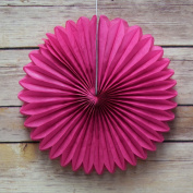 Quasimoon 20cm Fuchsia / Hot Pink Tissue Paper Flower Rosette Fan Decoration (6 Pack) by PaperLanternStore