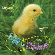 Egg to Chicken (Lifecycles)