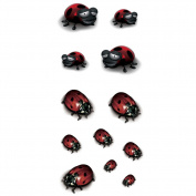 TAFLY Temporary Tattoo 3D Ladybug Waterproof Insects Tattoo Stickers for Kids 5 Sheets