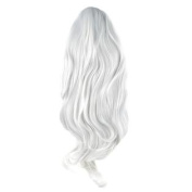 Long Short Straight Wavy Wig Hair Party Fashion Silvery white + Wig Cap 80CM