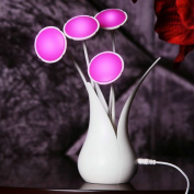 Vase Led Night Light Lighting Energy Saving Sensor Table Desk Lamp for Kids Adult Bedroom Christmas Gift